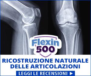 Flexin500 - giunti